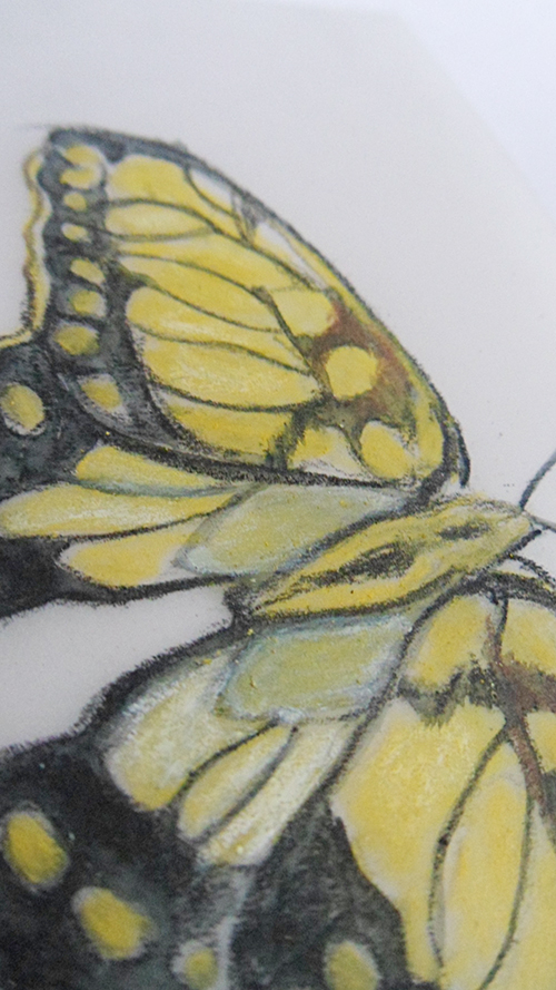 drawing-close-up
