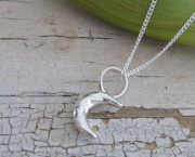 ABJ tiny crescent moon 7